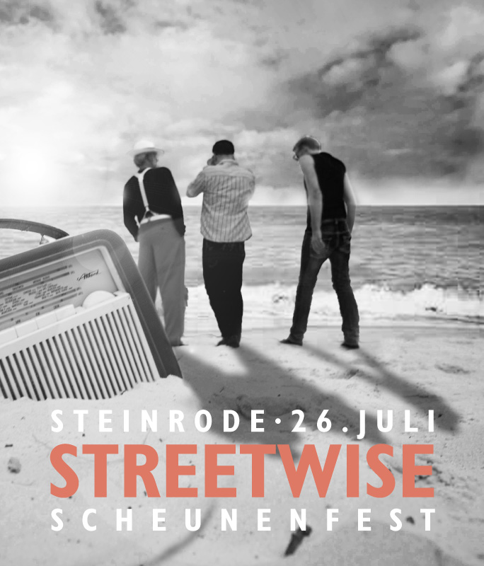 Streetwise_Poster_140726_Steinrode